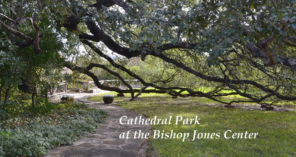 Cathedral Park at the  Bishop Jones Center